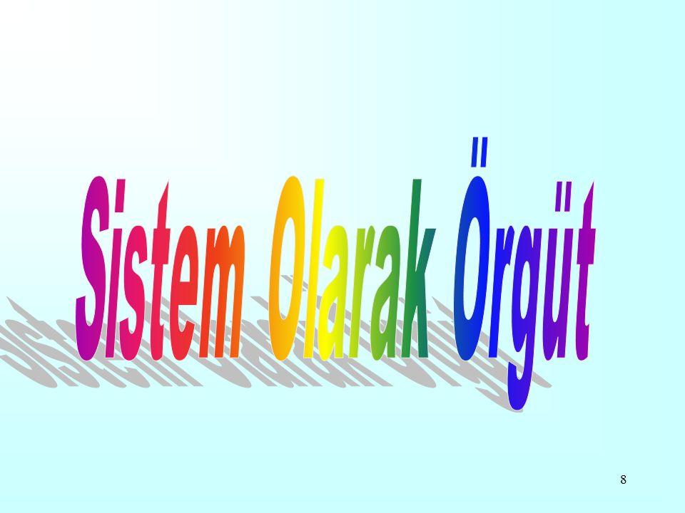 Sistem Olarak Örgüt
