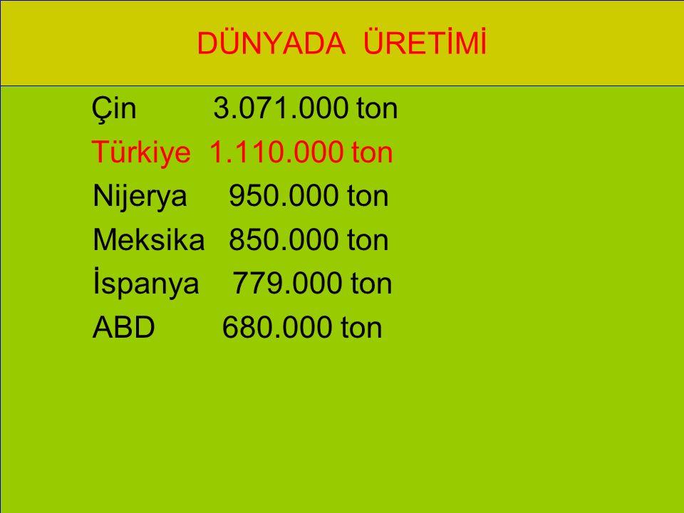 DÜNYADA ÜRETİMİ Çin 3.071.000 ton. Türkiye 1.110.000 ton. Nijerya 950.000 ton. Meksika 850.000 ton.