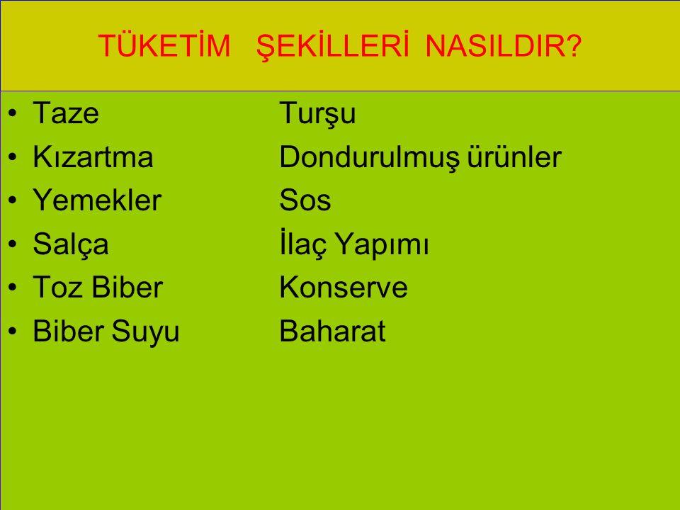TÜKETİM ŞEKİLLERİ NASILDIR