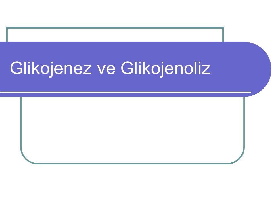 Glikojenez ve Glikojenoliz
