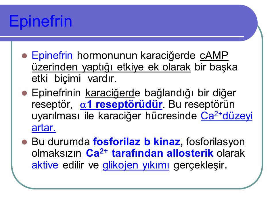 Epinefrin Epinefrin hormonunun karaciğerde cAMP üzerinden yaptığı etkiye ek olarak bir başka etki biçimi vardır.