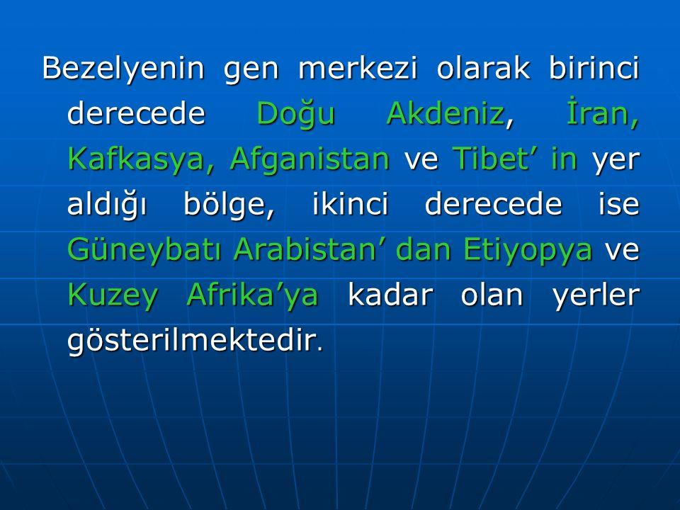 Bezelyenin gen merkezi olarak birinci derecede Doğu Akdeniz, İran, Kafkasya, Afganistan ve Tibet' in yer aldığı bölge, ikinci derecede ise Güneybatı Arabistan' dan Etiyopya ve Kuzey Afrika'ya kadar olan yerler gösterilmektedir.