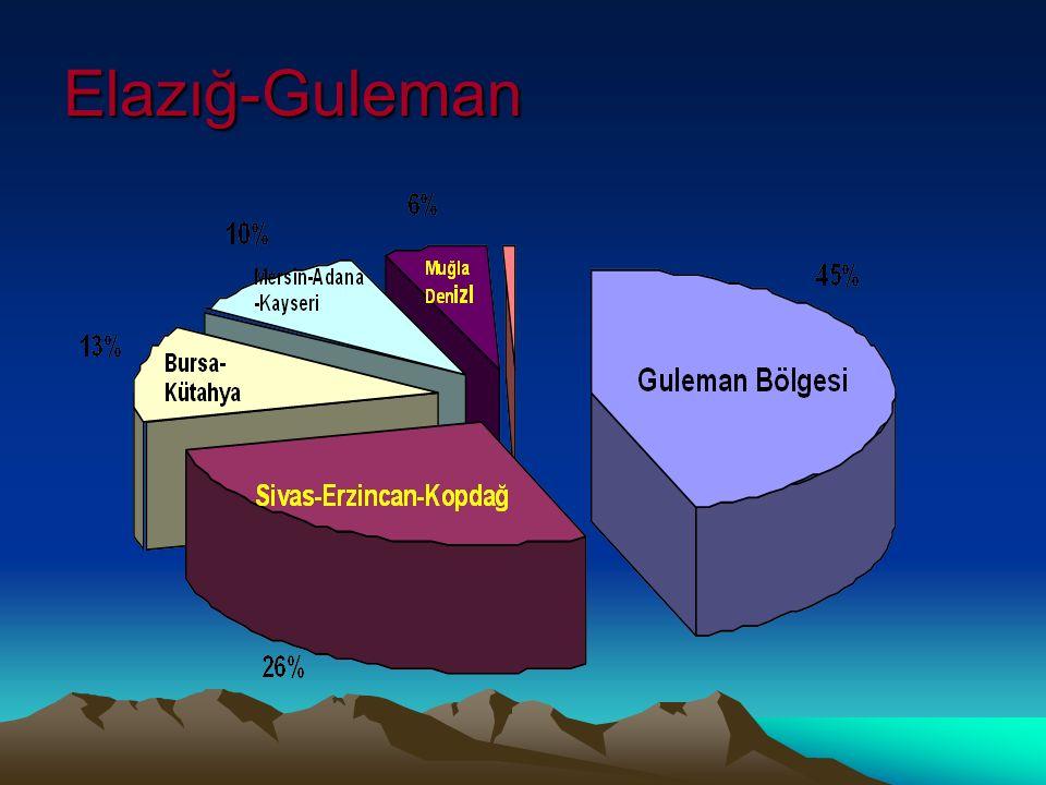 Elazığ-Guleman