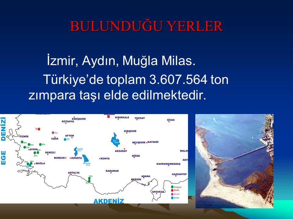BULUNDUĞU YERLER İzmir, Aydın, Muğla Milas.