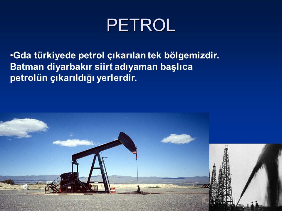 PETROL Gda türkiyede petrol çıkarılan tek bölgemizdir.