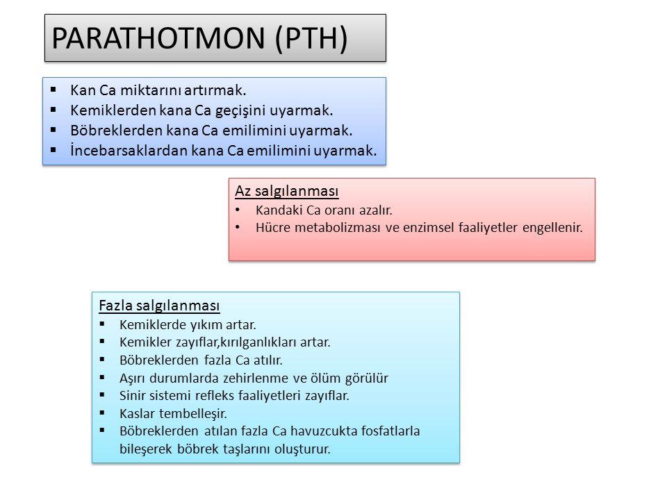 PARATHOTMON (PTH) Kan Ca miktarını artırmak.