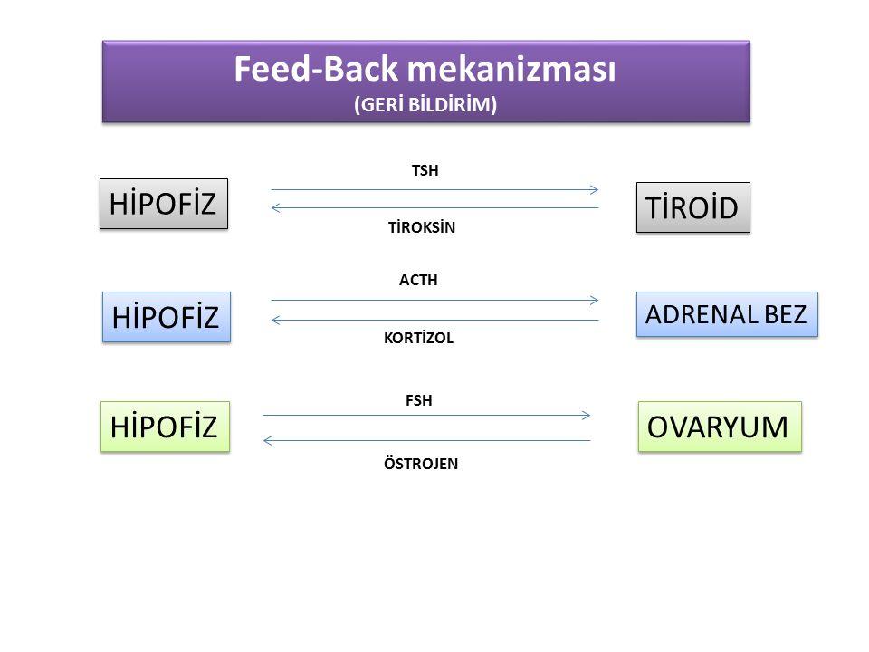 Feed-Back mekanizması