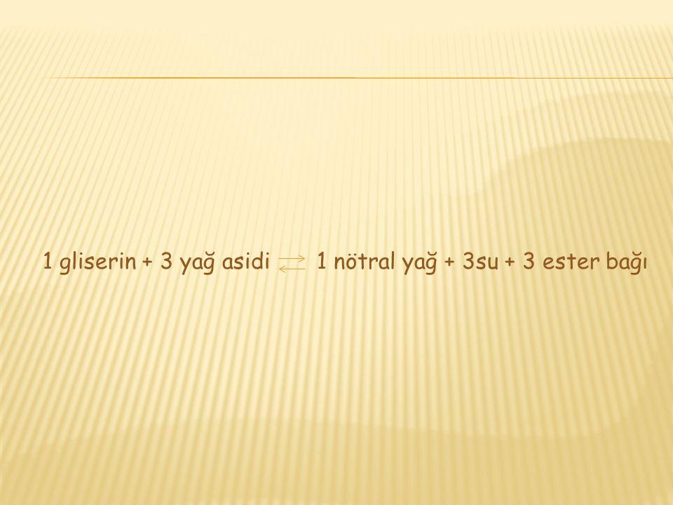 1 gliserin + 3 yağ asidi 1 nötral yağ + 3su + 3 ester bağı