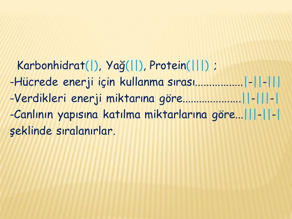 Karbonhidrat(|), Yağ(||), Protein(|||) ; -Hücrede enerji için kullanma sırası.................|-||-||| -Verdikleri enerji miktarına göre.....................||-|||-| -Canlının yapısına katılma miktarlarına göre...|||-||-| şeklinde sıralanırlar.