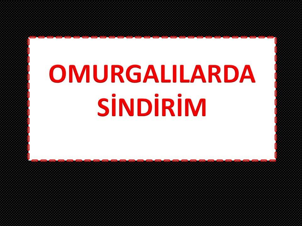 OMURGALILARDA SİNDİRİM