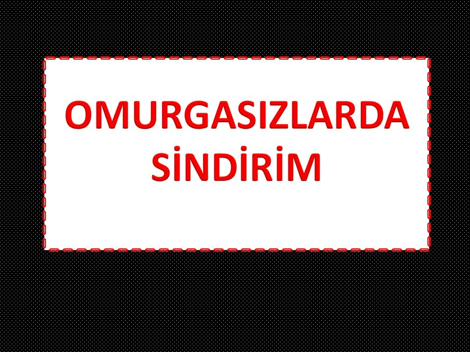 OMURGASIZLARDA SİNDİRİM