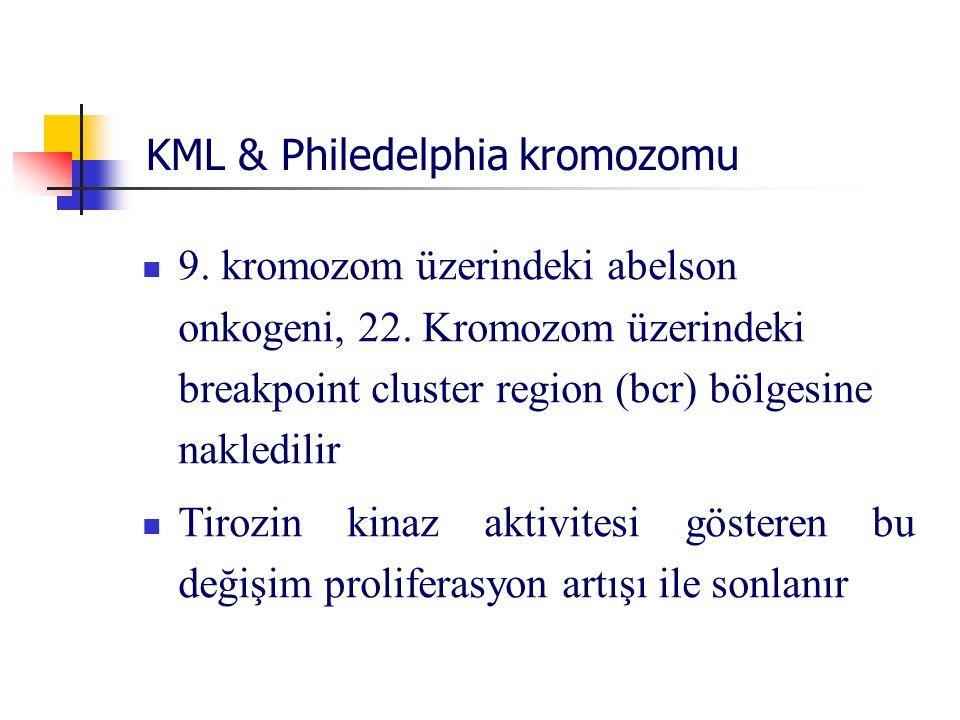 KML & Philedelphia kromozomu