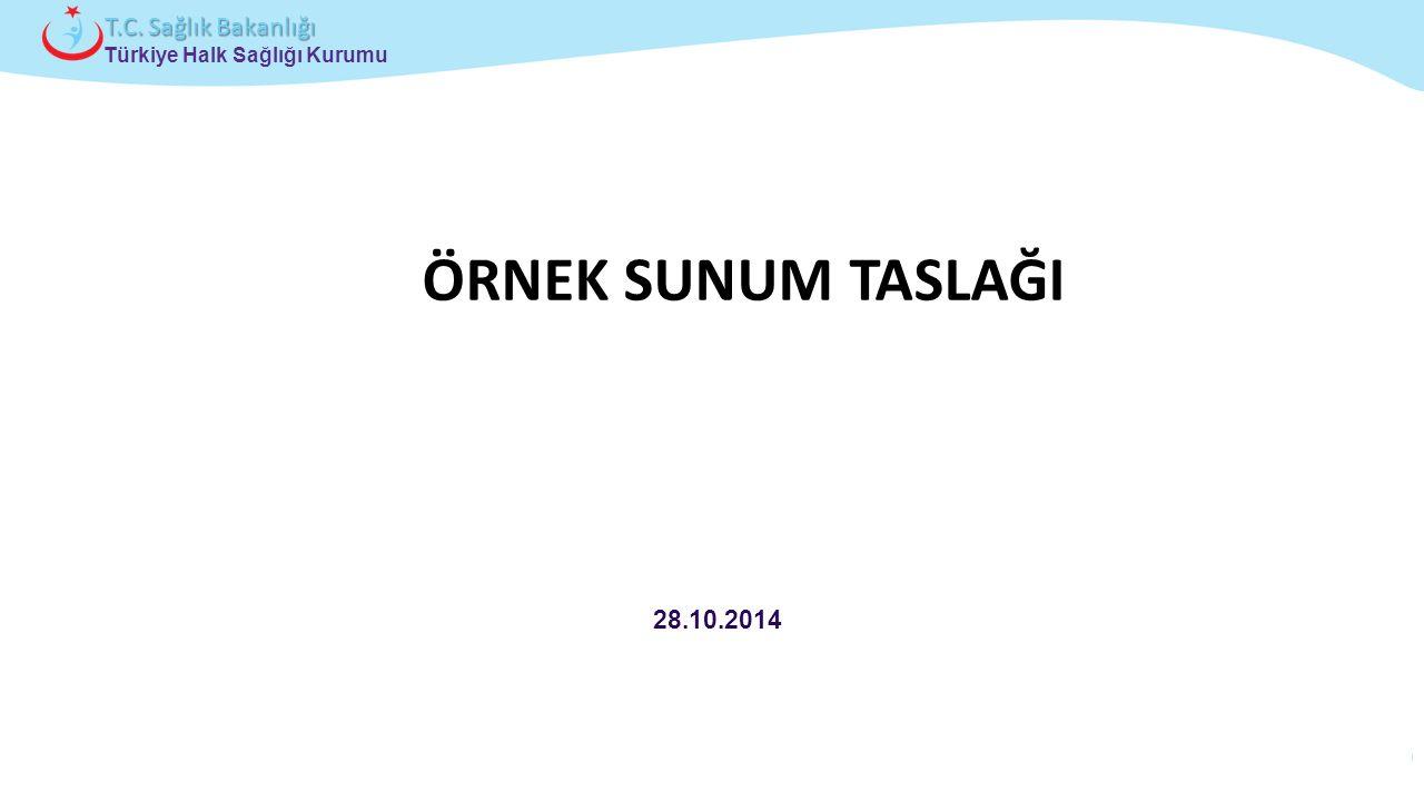 ÖRNEK SUNUM TASLAĞI 28.10.2014