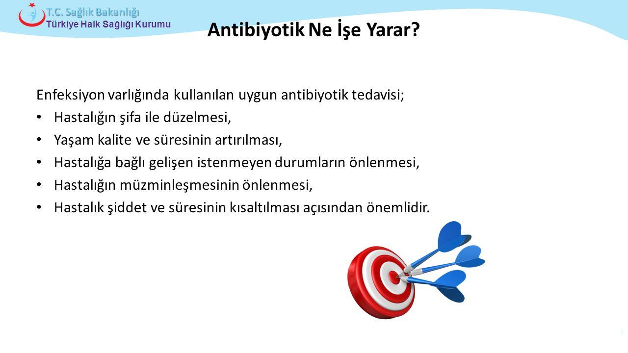 Antibiyotik Ne İşe Yarar