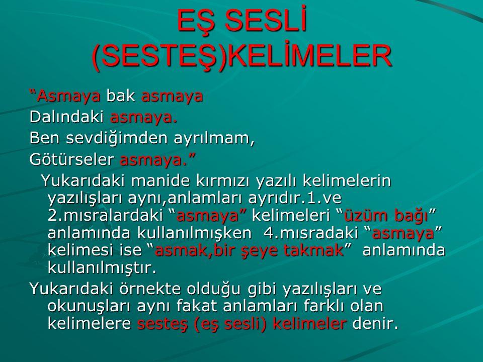 EŞ SESLİ (SESTEŞ)KELİMELER