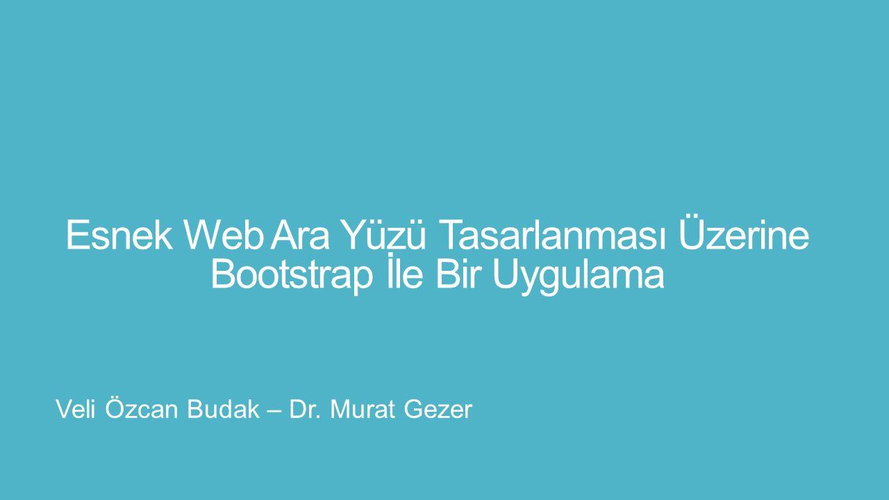 Esnek Web Ara Yüzü Tasarlanması Üzerine Bootstrap İle Bir Uygulama