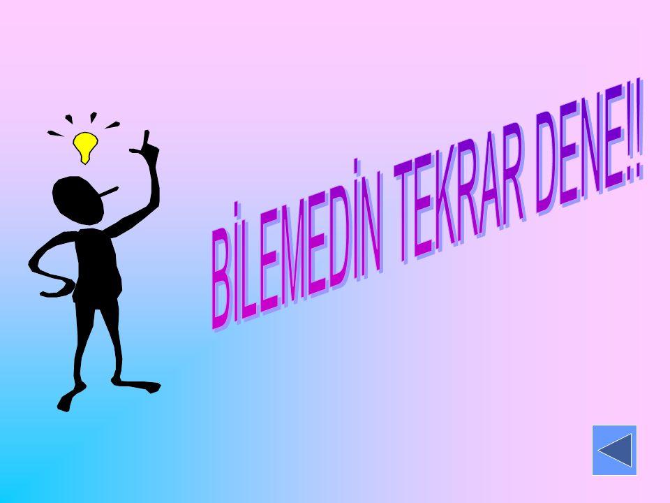 BİLEMEDİN TEKRAR DENE!!