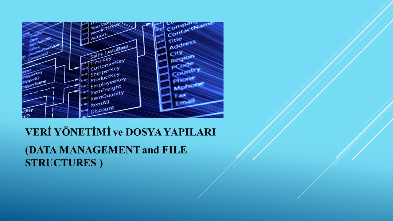 VERİ YÖNETİMİ ve DOSYA YAPILARI (DATA MANAGEMENT and FILE STRUCTURES )