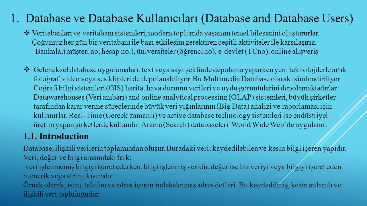 Database ve Database Kullanıcıları (Database and Database Users)