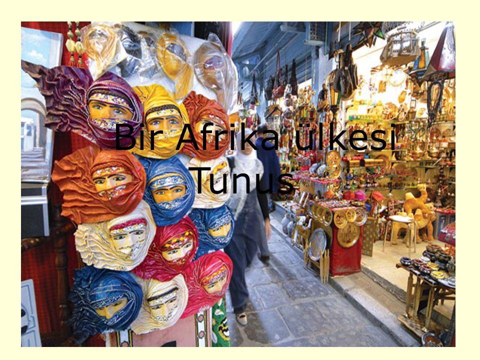 Bir Afrika ülkesi Tunus