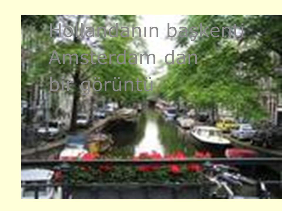 Hollandanın başkenti Amsterdam dan bir görüntü