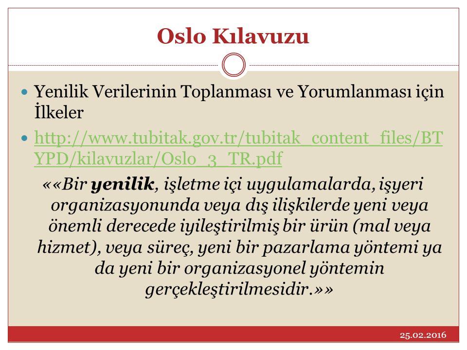 Oslo Kılavuzu Yenilik Verilerinin Toplanması ve Yorumlanması için İlkeler.