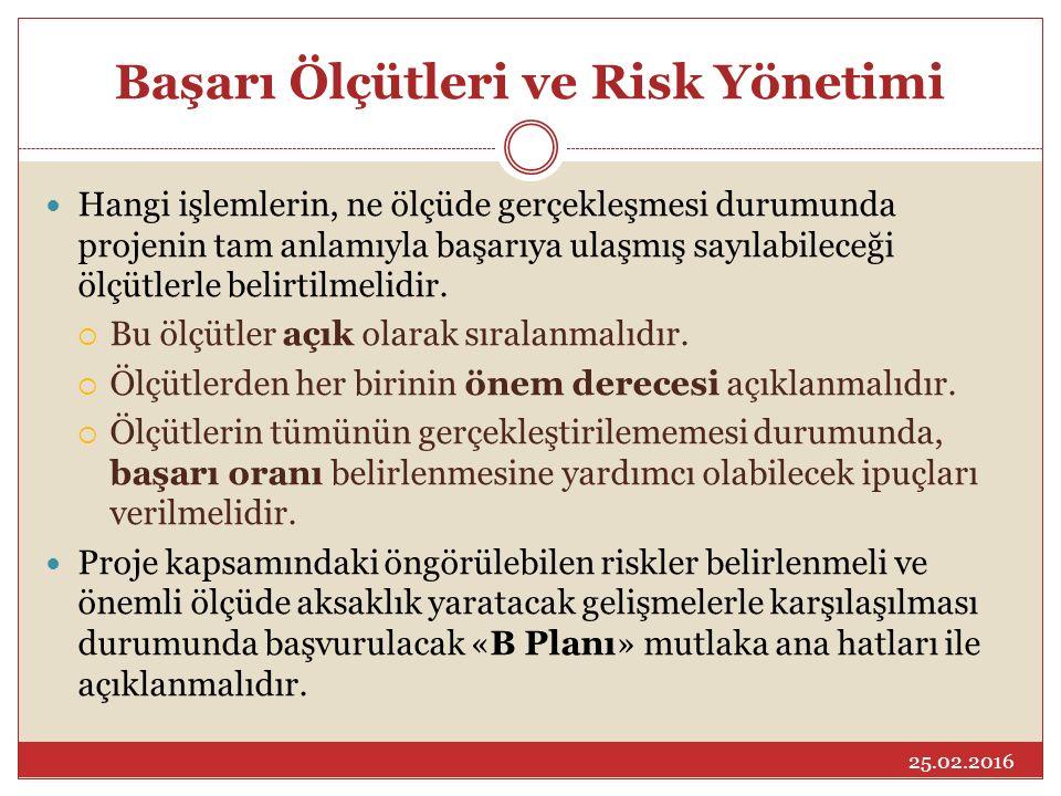 Başarı Ölçütleri ve Risk Yönetimi