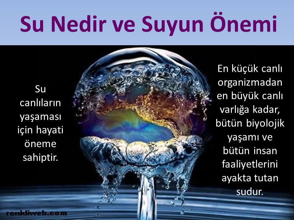 Su canlıların yaşaması için hayati öneme sahiptir.