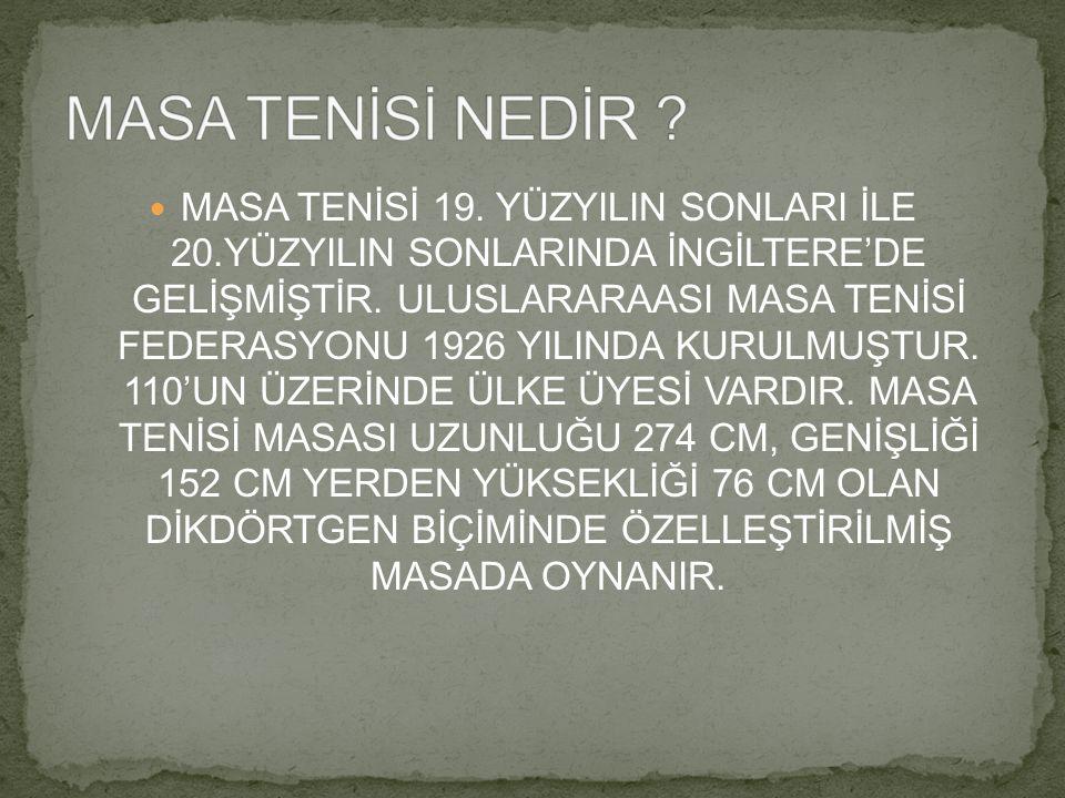 MASA TENİSİ NEDİR