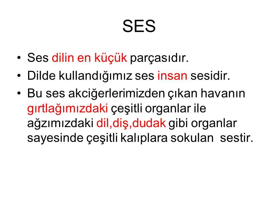 SES Ses dilin en küçük parçasıdır.