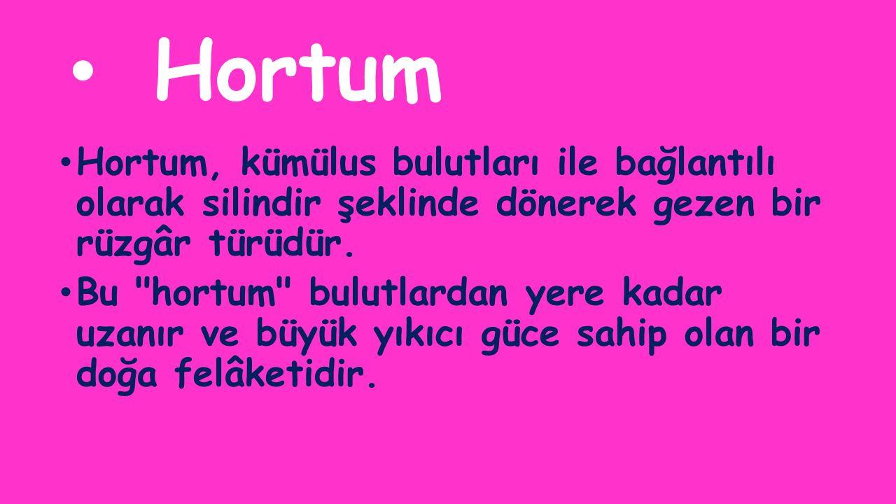 Hortum Hortum, kümülus bulutları ile bağlantılı olarak silindir şeklinde dönerek gezen bir rüzgâr türüdür.