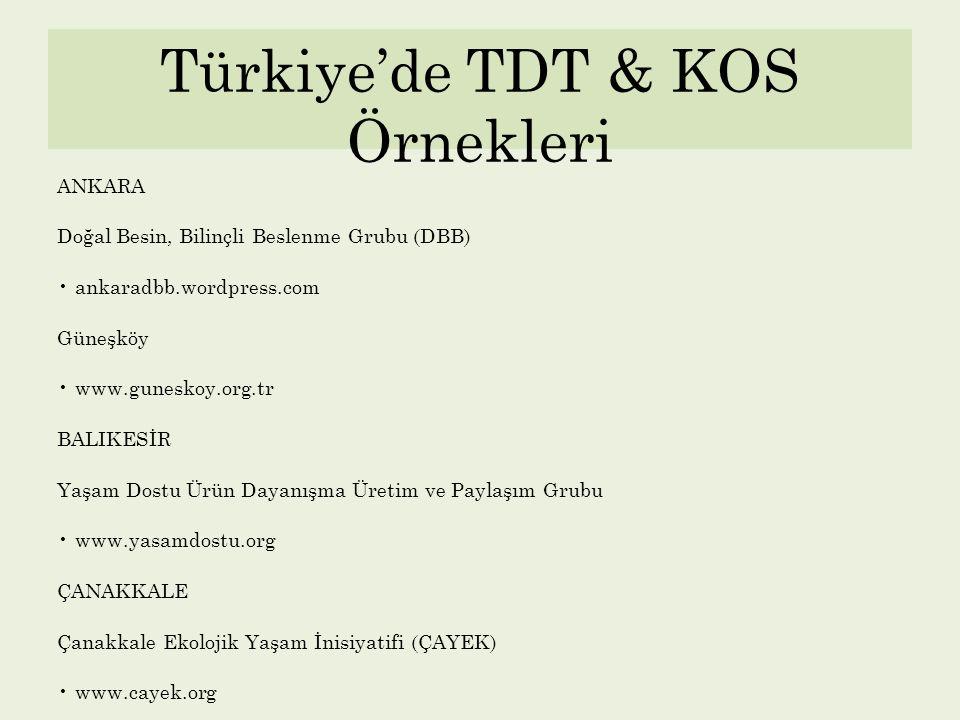 Türkiye'de TDT & KOS Örnekleri