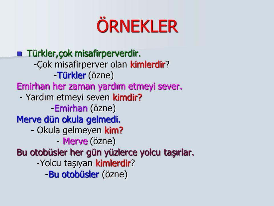 ÖRNEKLER Türkler,çok misafirperverdir.