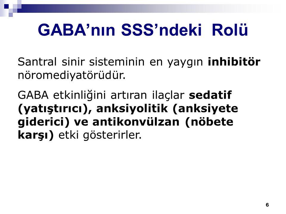 GABA'nın SSS'ndeki Rolü