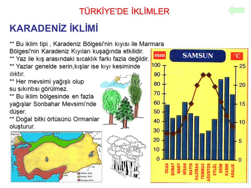 KARADENİZ İKLİMİ TÜRKİYE'DE İKLİMLER