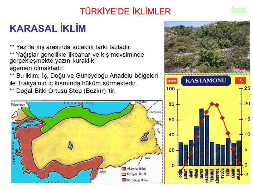 KARASAL İKLİM TÜRKİYE'DE İKLİMLER