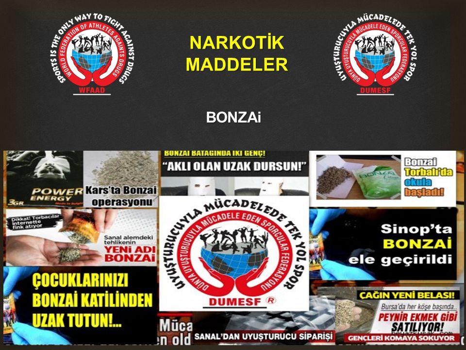 NARKOTİK MADDELER BONZAi