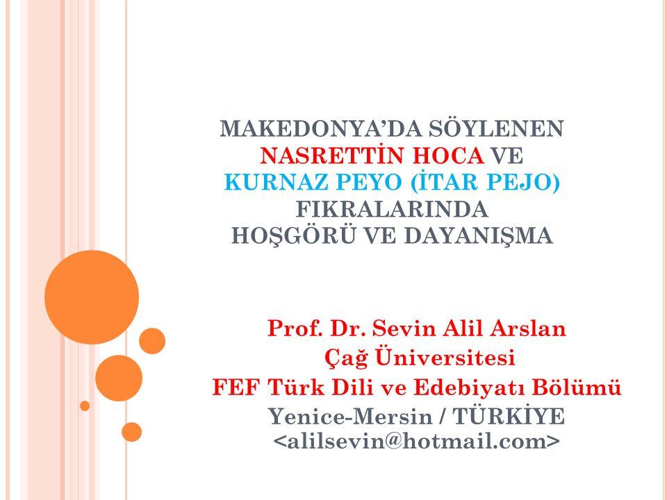 Prof. Dr. Sevin Alil Arslan Çağ Üniversitesi