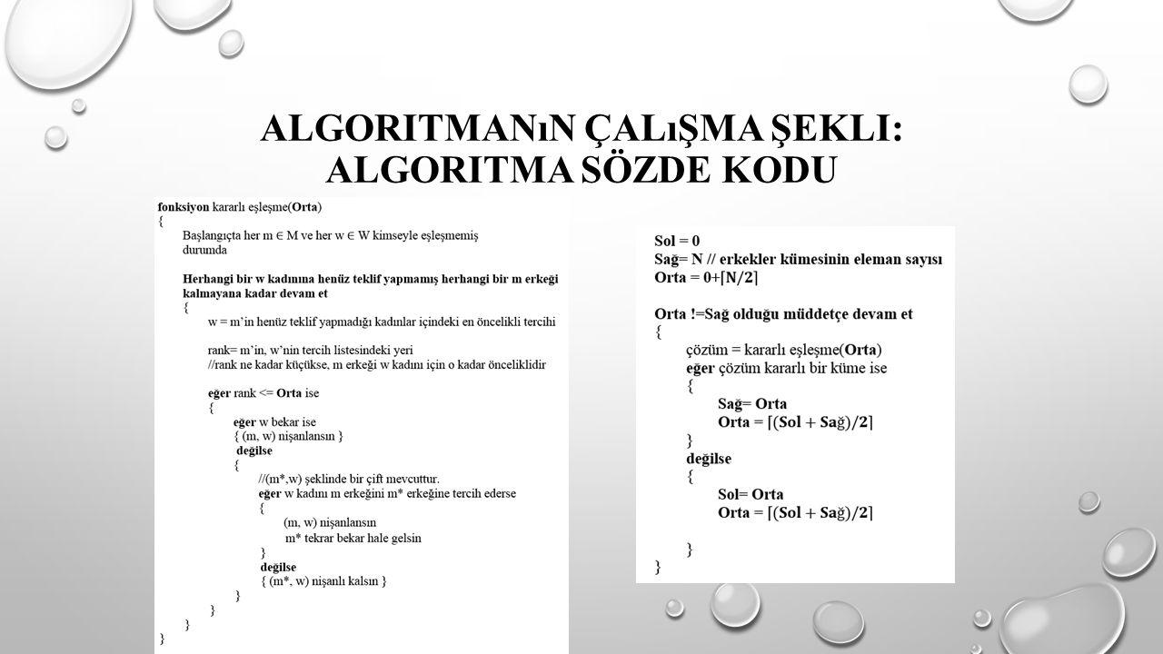 Algoritmanın Çalışma Şekli: Algoritma Sözde Kodu