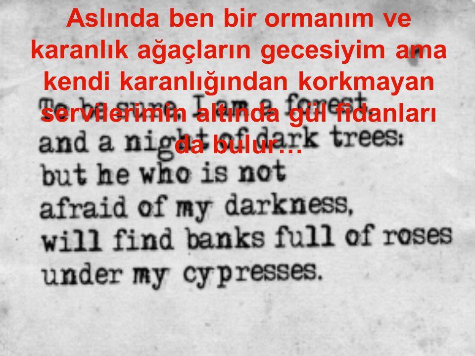 Aslında ben bir ormanım ve karanlık ağaçların gecesiyim ama kendi karanlığından korkmayan servilerimin altında gül fidanları da bulur…
