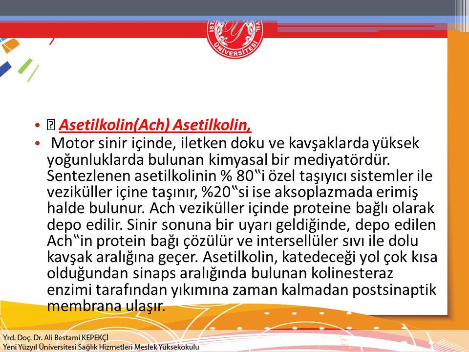 Asetilkolin(Ach) Asetilkolin,