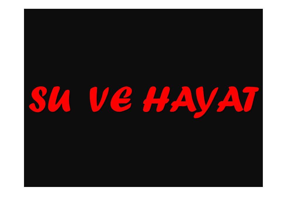 SU VE HAYAT
