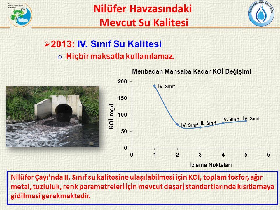 Nilüfer Havzasındaki Mevcut Su Kalitesi