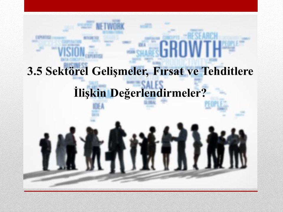 3.5 Sektörel Gelişmeler, Fırsat ve Tehditlere İlişkin Değerlendirmeler