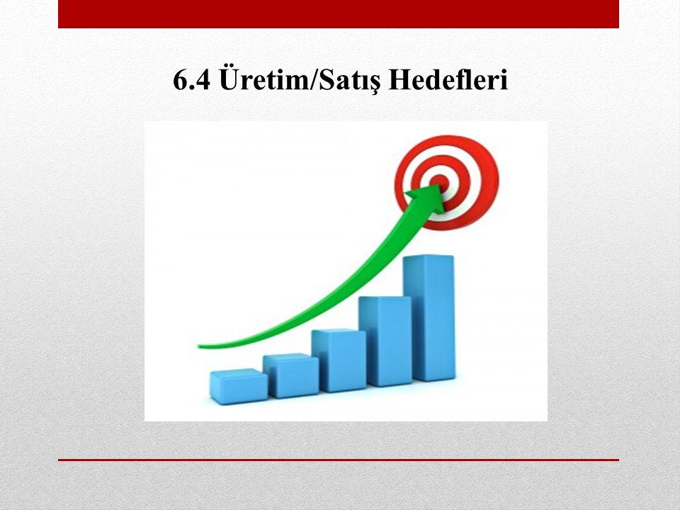 6.4 Üretim/Satış Hedefleri