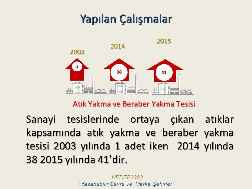 Yapılan Çalışmalar 2015. 2014. 2003. 1. 38. 41. Atık Yakma ve Beraber Yakma Tesisi.