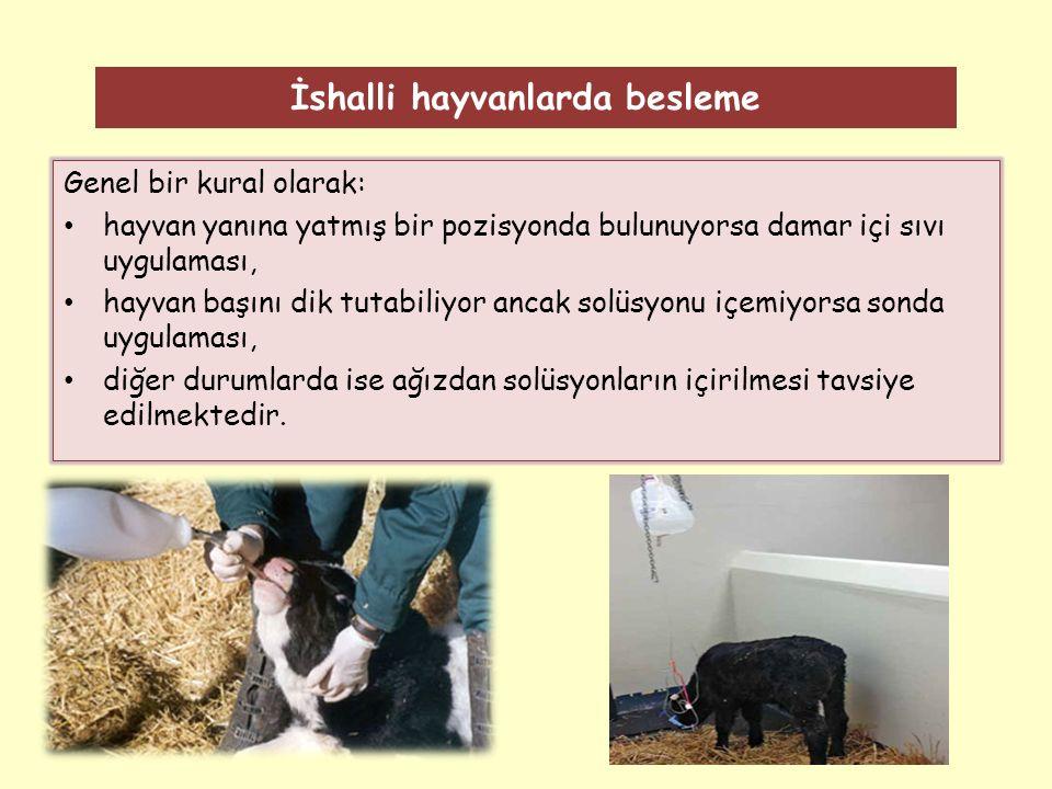 İshalli hayvanlarda besleme
