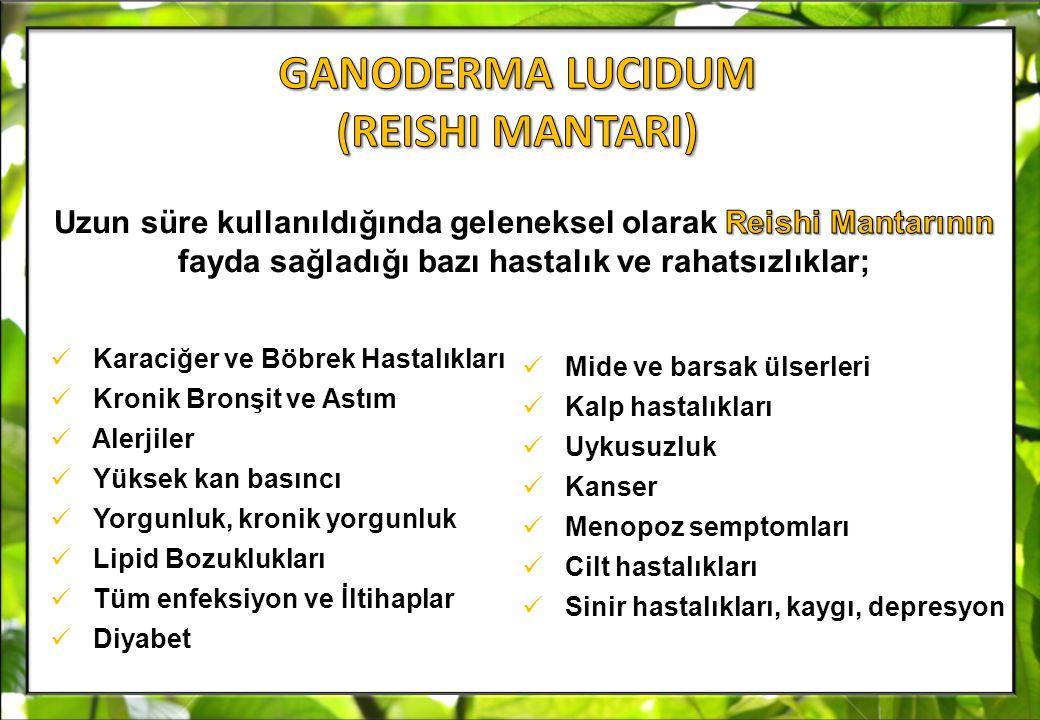 GANODERMA LUCIDUM (REISHI MANTARI)