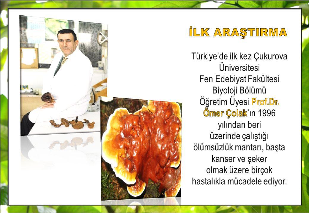 İLK ARAŞTIRMA Türkiye'de ilk kez Çukurova Üniversitesi