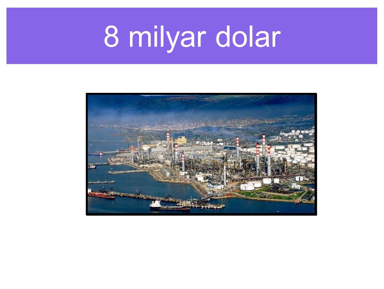 8 milyar dolar
